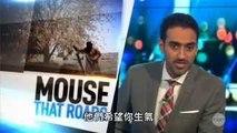 Les États islamiques sont faibles,Australie-show. un. Letat islamique de lintrigue dans le texte PHP