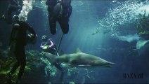 Bain de mer de Rihanna avec les requins : les coulisses du shooting pour Harpers Bazaar