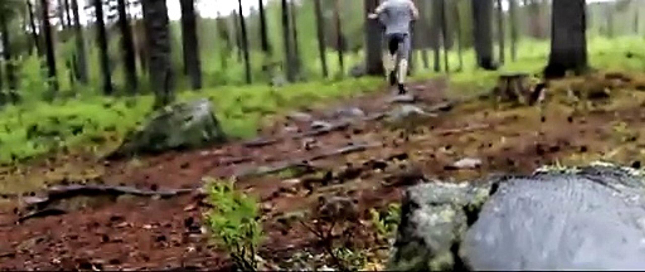 motivational workout video best fitness motivation video hd