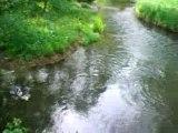Roanne riorges renaison petite pluie mai 2007