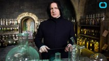 Fans Pay Tribute to Alan Rickman at Harry Potter Wizarding World