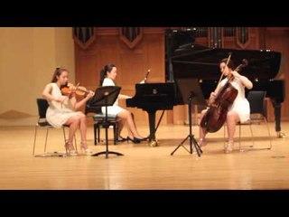 Bramhs Piano Trio No.2 1st 브람스 피아노 트리오 1번 2악장