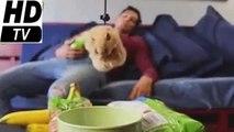 """Новая подборка приколов 2016 - Видео которое""""взорвало"""" интернет)))"""