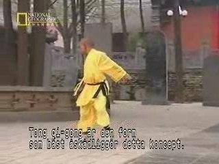 Kungfu-fighting