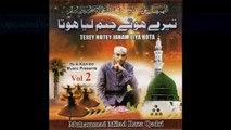 Allah Allah Nabi Ka Gharana - Naat by Muhammad Milad Raza Qadri