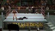 WWE SmackDown vs. RAW 2010 wonder woman fight 2
