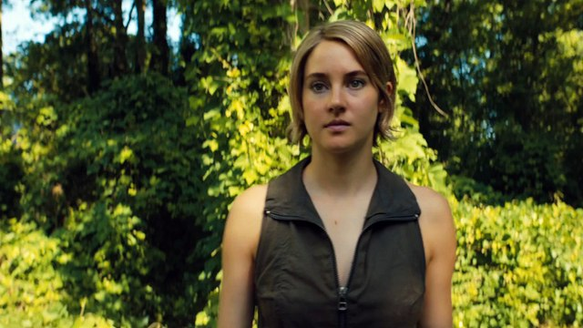 "The Divergent Series Allegiant – ""Tear Down The Wall"""
