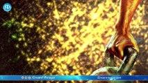 Sarainodu Movie Motion Poster - Allu Arjun || Rakul Preet ||  Boyapati Srinu || Allu Arvind