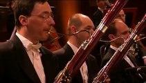 Brahms 1st Symphony, 2nd mov. Orchestre national de Lyon, Louis Langrée