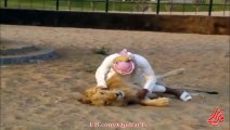 Arabi People and Lion - Watch who wins - The Game