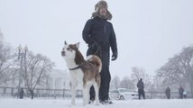 'Snowzilla' can't stop these people from visiting the White House