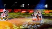 Avignon : Cheval Passion fait le show