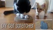 Astuce ingénieuse pour réaliser un griffoir pour votre chat en quelques minutes