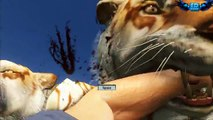 Far Cry 3 1000 Tigers Vs RPG Massive Scale Battles!