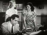 D.O.A. (1950) Film Noir