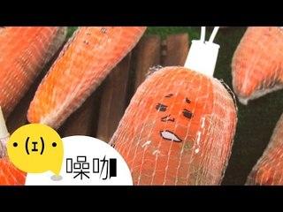 【翻轉吧,人生】醜蔬果大翻身 - 陳彥利