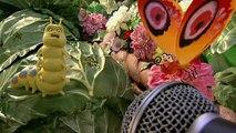 The Garden Creature Comforts Part 2 (HD)
