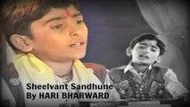 Hari Bharwad - Sheelvant Sadhu Ne | Gujarati | Devotional | Krishna Bhajans