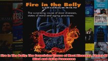 Download PDF  Fire In The Belly The Surprising Cause of Most Diseases States Of Mind and Aging FULL FREE