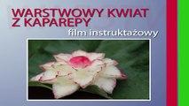 017. Darmowy kurs carvingu warstwowy kwiat z kalarepy _ Free carving course layered kohlrabi flower