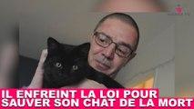 Il enfreint la loi pour sauver son chat de la mort ! À suivre dans la minute chat #112