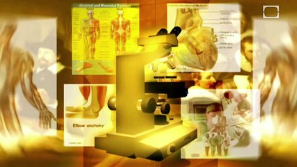 Future Human Evolution | CLASSIC
