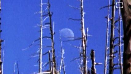 Lunar Anomalies | CLASSIC