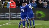 Manchester City 3 - 1 Everton All Goals 27_01_2016