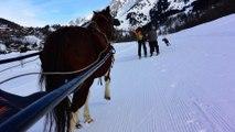 Ski Joering a la clusaz ! avec Aravis Passion