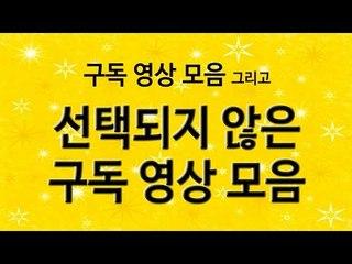 사이다님 구독영상 모음