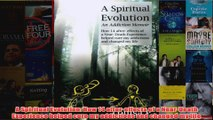 Download PDF  A Spiritual Evolution How 14 aftereffects of a NearDeath Experience helped cure my FULL FREE