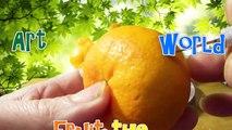 ART FRUIT THE WORLD - Fruit Carving Orange Mandarin Clementine Garnish