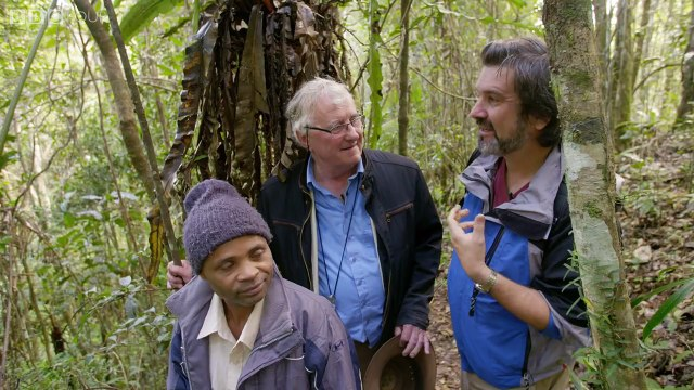 Feeding the Lemurs - Natures Wonderlands: Islands of Evolution - BBC Four