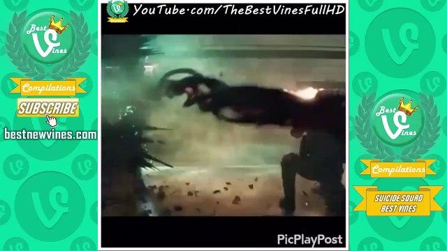 Best Vines Suicide Squad Compilation: Ultimate Suicide Squad Vines Edits