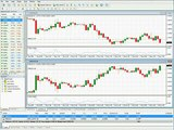 Learn Forex Correlation Trading - In our Forex Trading Pro System Course