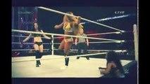 WWE Elimination Chamber - Nikki Bella vs Paige vs Naomi Triple Threat Divas Championship Match HD