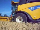 Moisson des blés avec New Holland CX8070