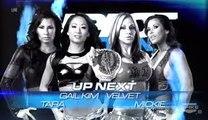 Velvet Sky Mickie James vs Gail Kim Tara | TNA