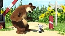 Маша и Медведь - Дальний родственник (Серия 15) (1)