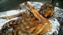Ötzi: La Momie Des Glaces