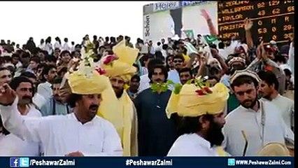 Peshawer Zalmi New Song Cricket janon