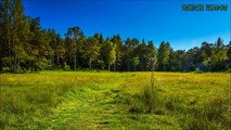 Swedish Folk Music - Swedish Meadow