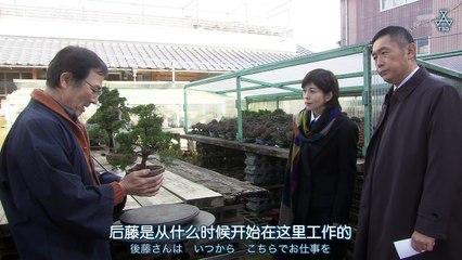 科搜研之女15 第10集 Kasouken no Onna 15 Ep10