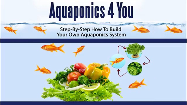 Aquaponics 4 You!! – SEE Free Tutorial here!!