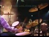 1987 Los Lobos La Bamba LIVE at MTV Awards