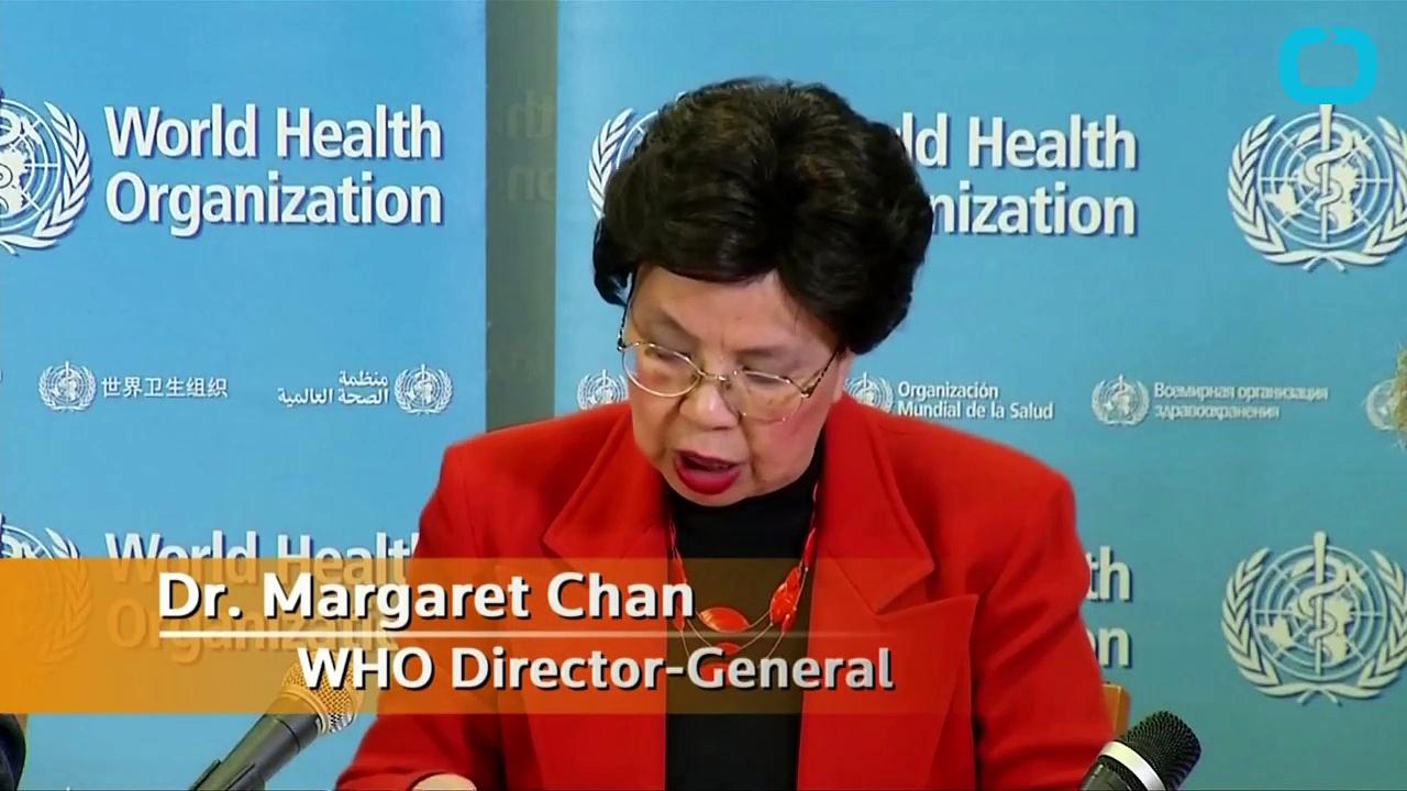World Health Organization Officially Declares Zika Virus a International Emergency