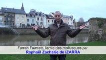 Farrah Fawcett, l'amie des mollusques par Raphaël Zacharie de IZARRA