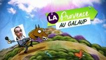 """La Provence au Galaup - """"Triplet gagnant """" (02/02/16)"""