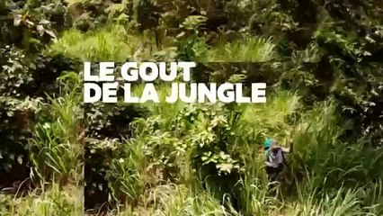 Cuisine sauvage #3 Guadeloupe avec Eric Guerin