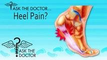 Is Heel Pain also Plantar Fasciitis? Spring Hill, Homosassa, Brooksville, Hudson, FL - Podiatrist